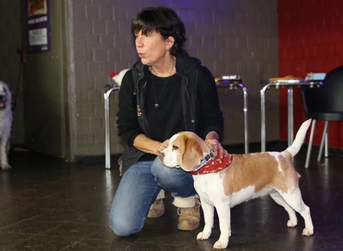Tierfilmworkshop mit Eve Schwender