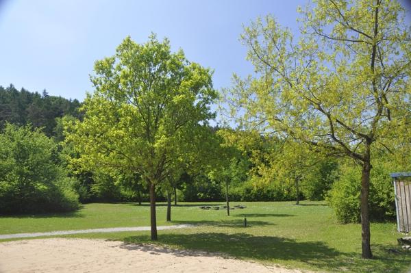 Zeltplatz 1